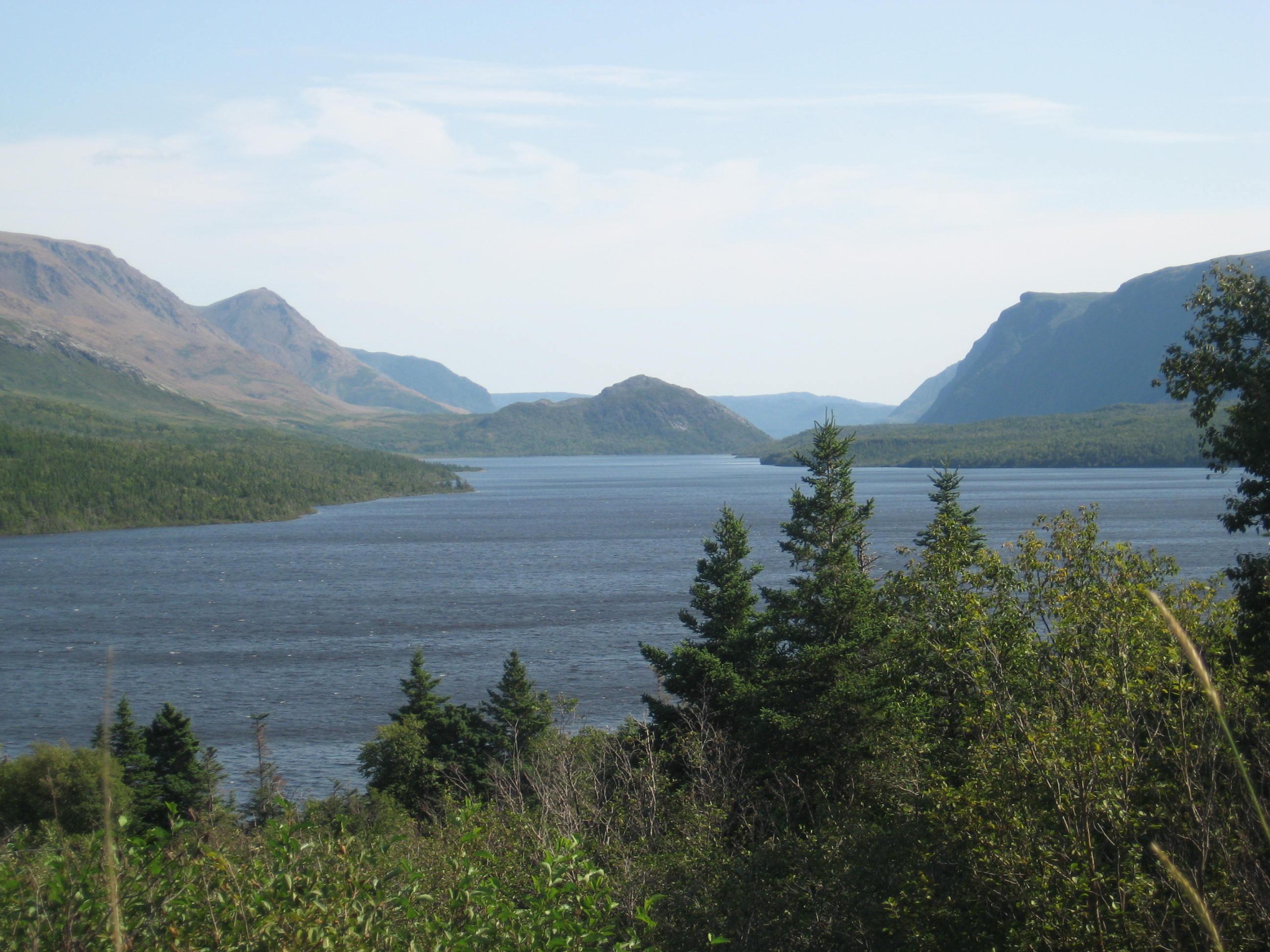 Paysage de fjords