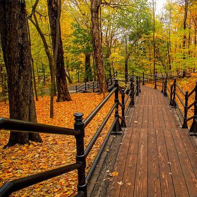 couleurs automne est canada québec ontario